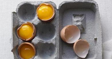 eggs eathing